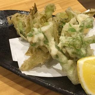 季節の天ぷら(タラの芽、蕗の薹)(銀座魚勝 (GINZA UOKATSU))