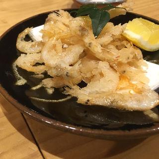 白えびの唐揚げ(銀座魚勝 (GINZA UOKATSU))