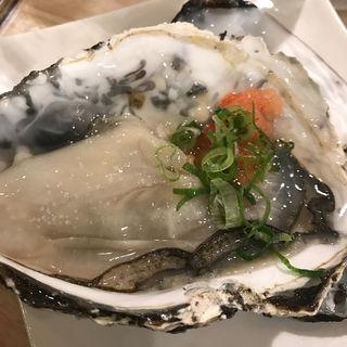 シェル牡蠣(すしまる )