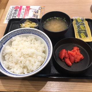 辛子明太子定食ご飯大盛(吉野家 札幌狸小路店)