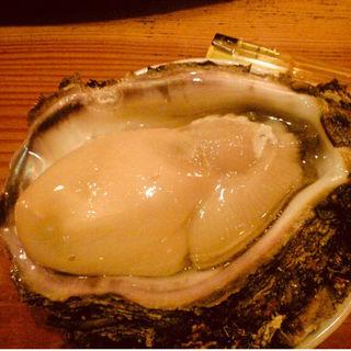 岩牡蠣(千成鮨 (せんなりすし))