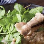 島根の猪と秋田のせり鍋