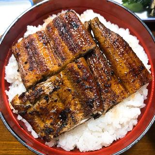 うなぎ丼(入船 (いりふね))