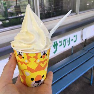ソフトクリーム(雪印こどもの国牧場 )