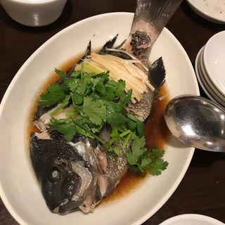 おすすめ鮮魚(まつもと )