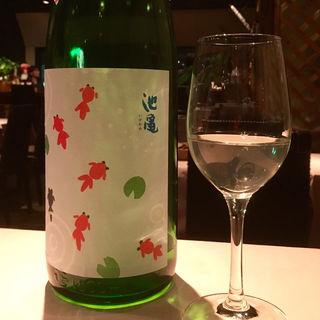 池亀 さわやか夏の純米酒(ラ・レジーア)