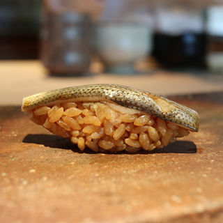 小鰭(菊鮨)