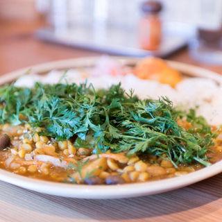 ベジタリアンカレー+パクチー(spiceスエヒロ (スパイススエヒロ))