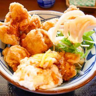タル鶏天ぶっかけ(丸亀製麺 春日井店 )