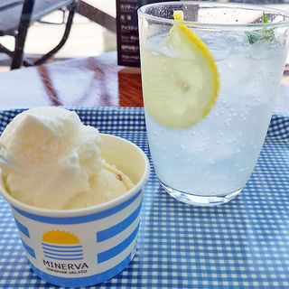 マイヤーレモン&クリームチーズ(ミネルヴァ (Minerva))