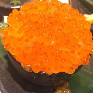 踊りいくら丼(大盛鮮魚カツオ )