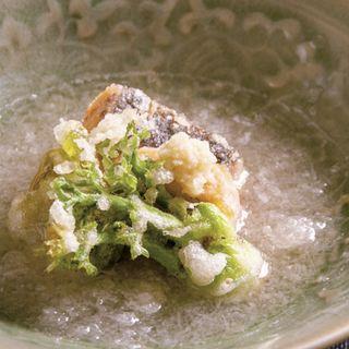 【煮物】桜鱒とふきのとうとたらの芽の煮おろし(銀座うち山)
