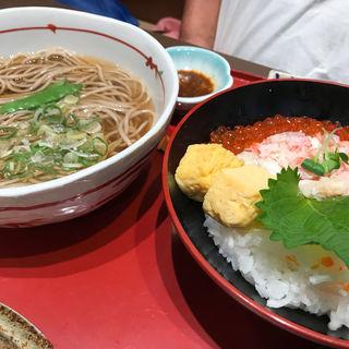 北海三色丼と麺(サガミ 守山店 (さがみ))