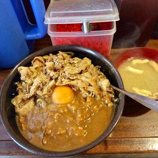 丼達カレー(丼達 水道橋店 (丼の達人 どんぶりのたつじん))