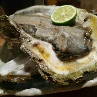 島根産岩がき(新橋いっぱし)