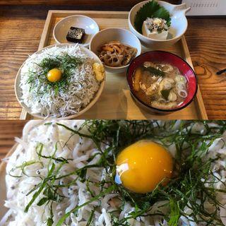 シラス丼(たぐい食堂 )