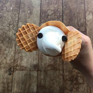 ゾウノハナソフトクリーム(象の鼻カフェ)
