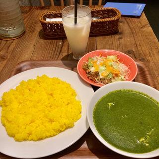 1種類のカレーセット(エスニック料理 マハラジャ 御茶ノ水店)