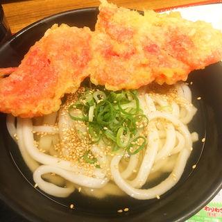 かけうどん(親父の製麺所 上野店 )