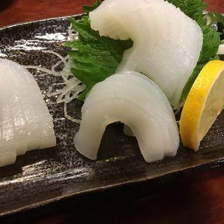 イカの刺身(割烹・小料理 輝石)