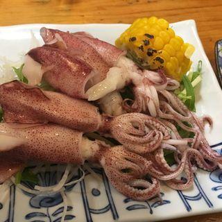 島原産小イカ酢味噌(寿司割烹『松ふじ』)