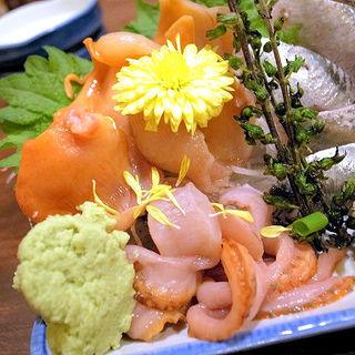 赤貝のお刺身(ほろよい )