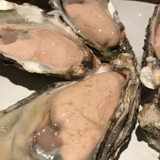 北海道の生牡蠣(牡蠣Bar (カキバー))