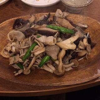 たっぷりキノコのアジアン醤油炒め(海月食堂 (くらげしょくどう))