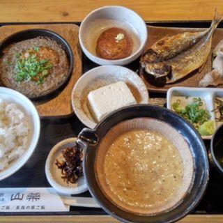 至高の昼ご飯 (山薬 )