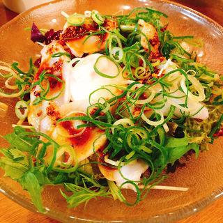 たこのねぎラー油サラダ(かっぽうぎ 南森町天神橋店 )