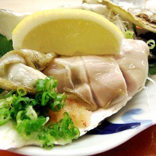 生牡蠣(割烹 やました )