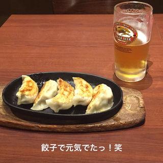 特大鉄板焼餃子(南天玉 新川店)