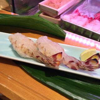 活車海老(ひょうたん寿司)