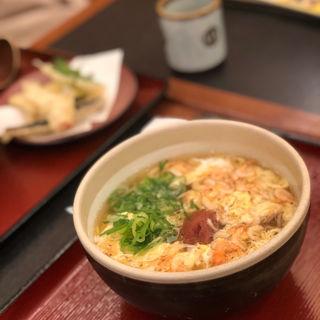 紀州の梅と桜海老のとじうどん(杵屋 京都ポルタ店 )