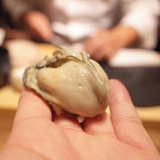牡蠣の握り(初音鮨 (はつねすし))