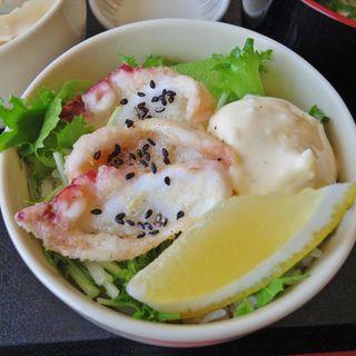 蛸の唐揚げ丼(ねむの丘レストラン眺海 )