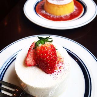 レアチーズケーキ(コーヒーハウスニシヤ)