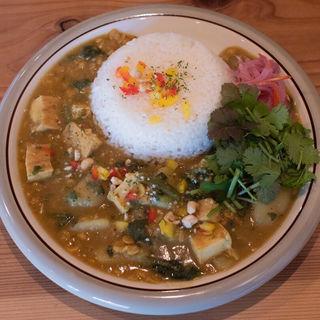 厚あげとホウレン草の豆カレー+オーガニックパクチー(spiceスエヒロ (スパイススエヒロ))
