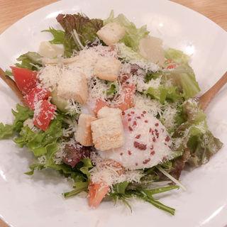 シーザーサラダ(とりどーる 西神戸店 )