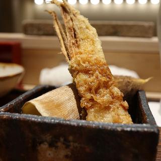 筍(蕎ノ字)