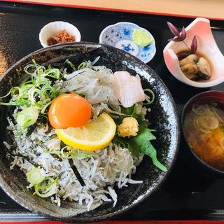 生シラスと茹でシラス丼(天晴水産 )