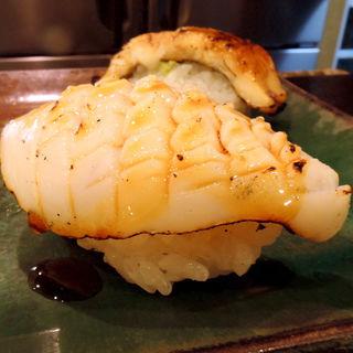 イカ 炙り(たく海 )