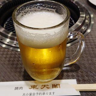 生ビール(中)(東天閣 川崎本店)