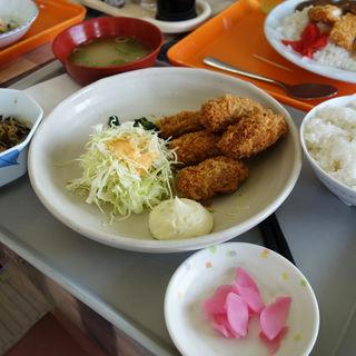 カキフライ定食(福岡市役所 本庁舎 社員食堂)