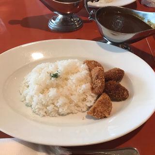 ヒレカツカレー(ノールド クダン (NORD KUDAN))