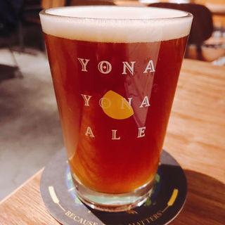 クラフトビール(麦酒酒場 幸民)