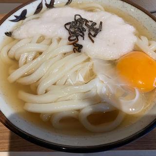 月見とろろうどん(Udon kyutaro)