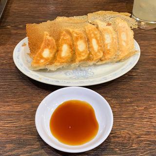 焼き餃子(典満餃子 (テンマンギョウザ))