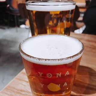 クラフトビール(辛民)
