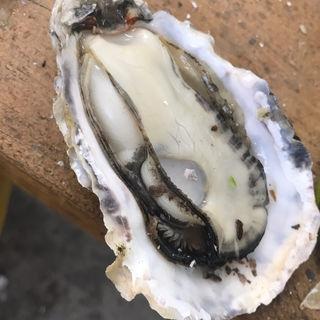 焼き牡蠣(牡蠣小屋 住吉丸 )